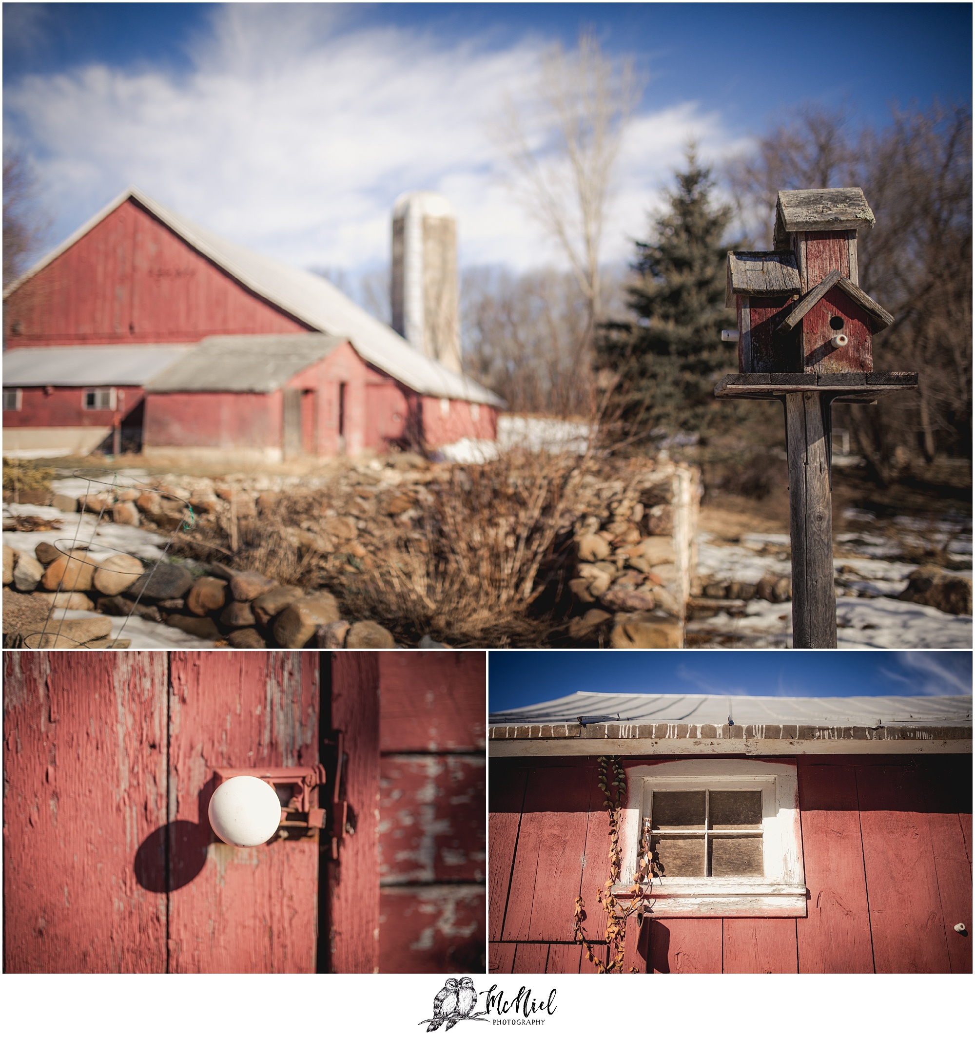 Marquette County Photographers
